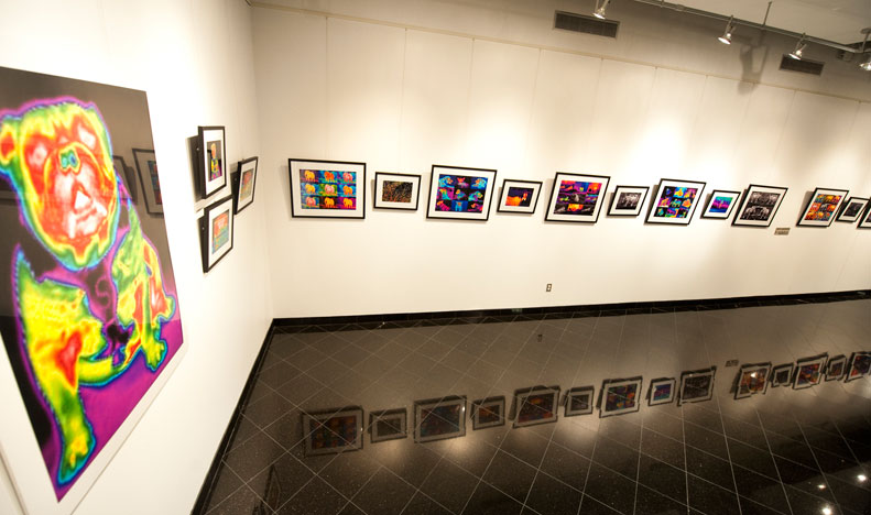 Thermal Photography Gallery